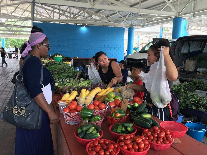 The Fondy Farmers Market