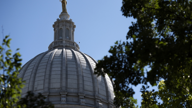 The top of the Wisconsin State Capitol is seen through trees