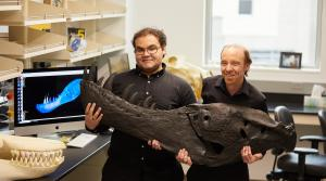 Read full article: UW-La Crosse Researchers Find T. Rex Had Unbeatable Ability To Turn