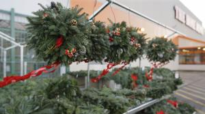 Read full article: Invasive Pest Found In Wreaths Sold In Wisconsin