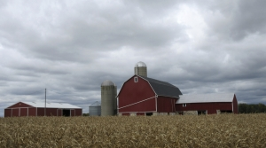 Read full article: Wisconsin Farmland Prices Increase Due To Steady Demand, Less Land For Sale