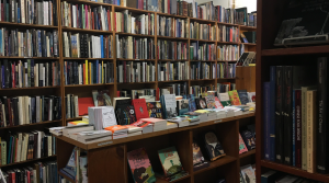 Shelves of books in a small store