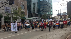 Climate strikers in Madison