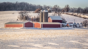 Read full article: Western Wisconsin Leads The Nation In Farm Bankruptcies, Again