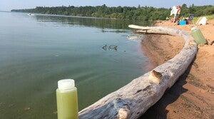 Read full article: Lake Superior Has Seen Half A Dozen Blue-Green Algae Blooms This Year