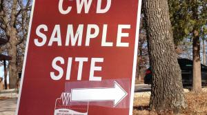 Read full article: DNR, Conservation Group Push Public Education Of Chronic Wasting Disease