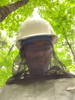 Ankur Desai in mosquito netting