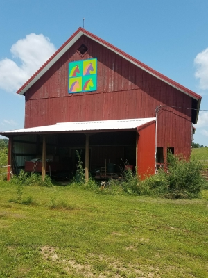 A Shawano County barn quilt called the Andy Warhol