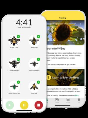 A screenshot of the WiBee app