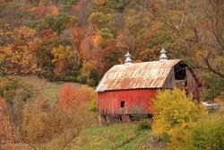 barn in fall colors setting