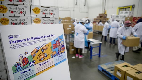 "A USDA poster depicting a ""Farmers to Families Food Box"" program is displayed"