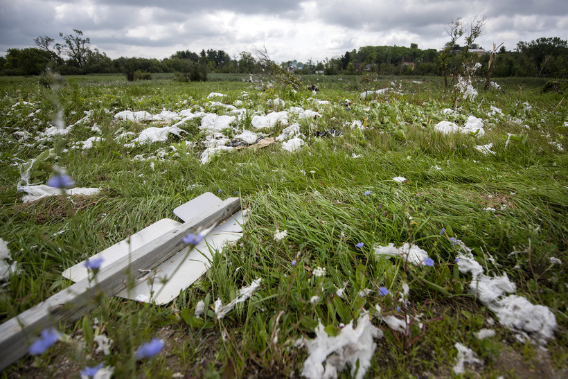 Fluffy white insulation is strewn across a grassy field.