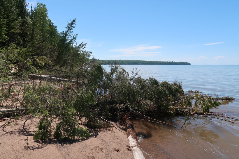 Trees have been cut or lean toward the shoreline.