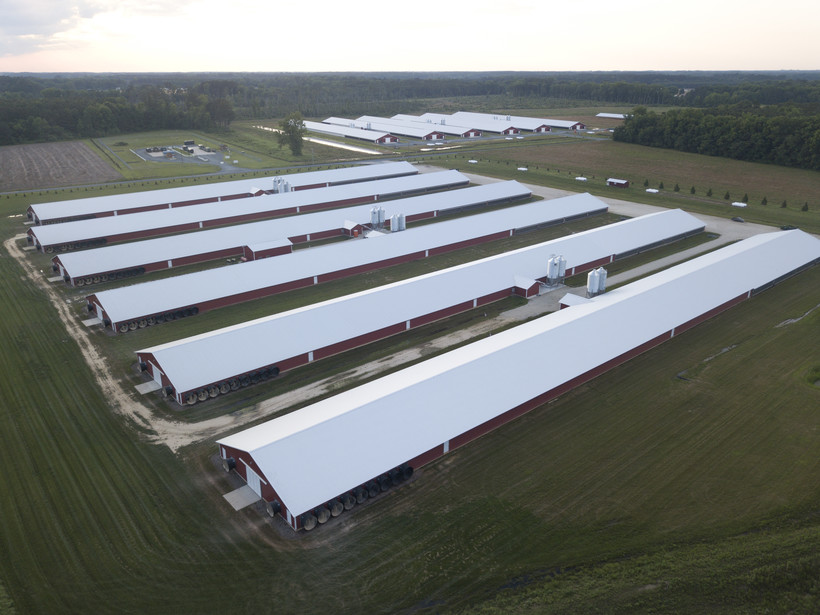 This image shows rows of chicken houses at the Summer's Rest Farm in Watchapreague, Va