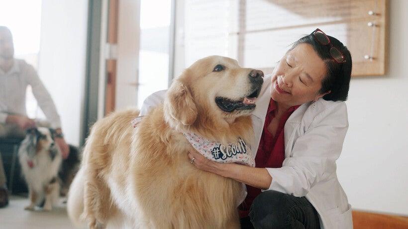 UW School of Veterinary Medicine dean Ruthanne Chun
