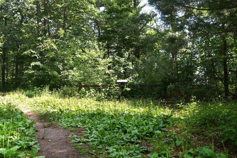 An unpaved path along the Lake Trail at Lake Wissota State Park bypasses an effigy mound, a sacred burial site that dates back more than 1,000 years