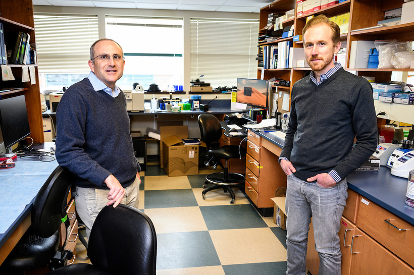 Researchers David O'Connor and Thomas Friedrich