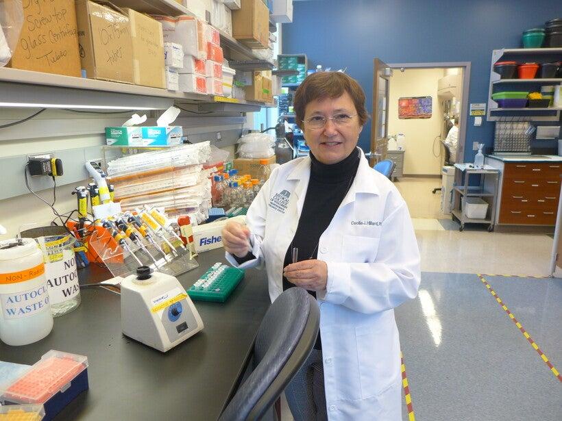 Pharmacology professor Cecilia Hillard