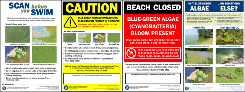 harmful algal bloom signs developed