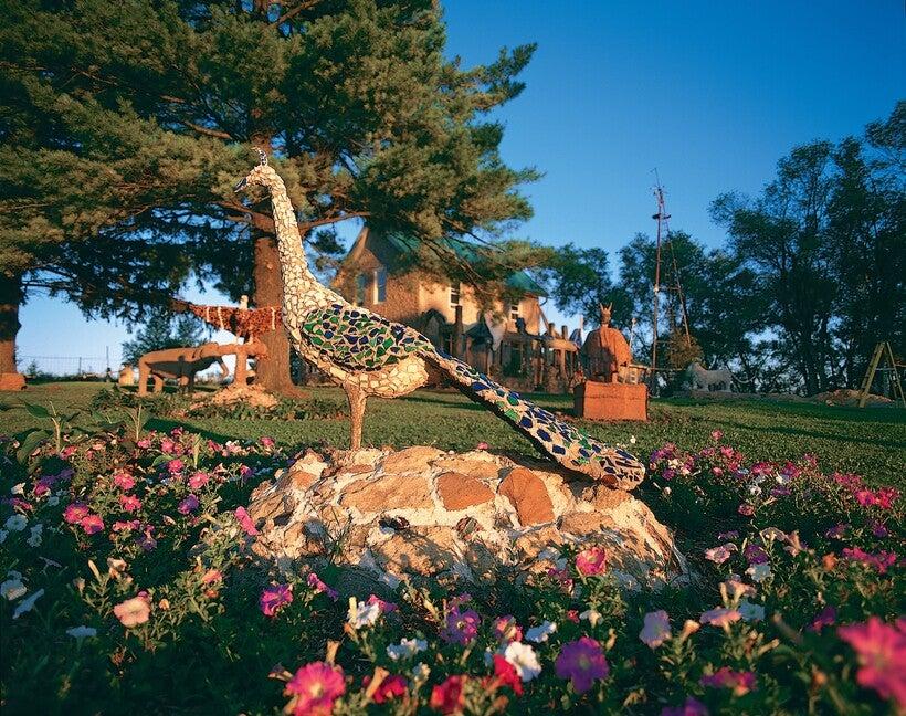 Nick Engelbert, Grandview peacock