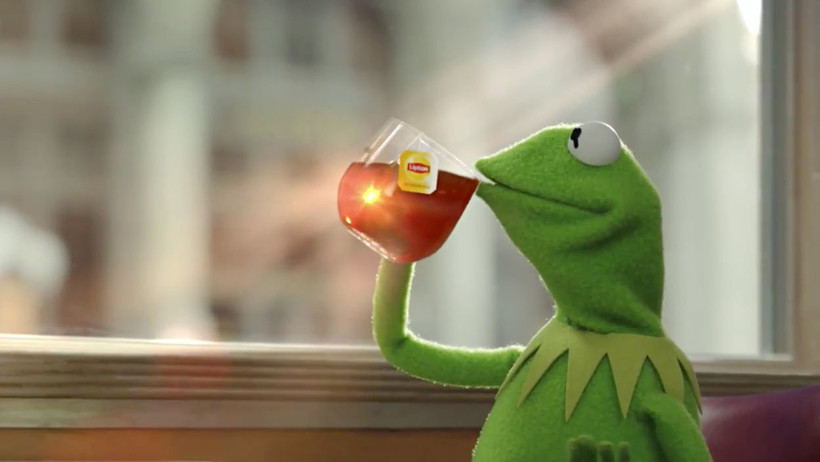 Kermit the frog, sipping the tea meme