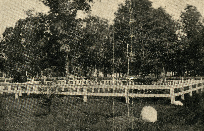 Confederate soldier graves at Forest Hill Cemetery